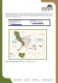 Mt Carrington Silver – Gold Project Exploration Update - White Rock ... - Page 2