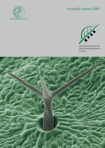 Scientific Report 2003 (pdf) - MPI für Pflanzenzüchtungsforschung