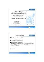 Kasper III TE 2010 LS - TCI @ Uni-Hannover.de - Leibniz Universität ...