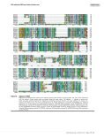 Identification and characterization of the DNA replication origin ... - Page 5