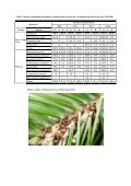 THE SPECIES COMPOSITION AND NUMBER OF APHIDS ON THE ... - Page 4