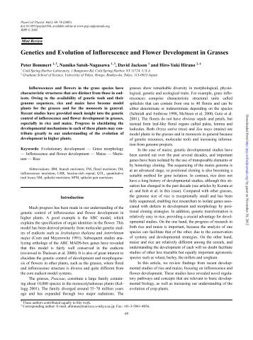 Genetics and Evolution of Inflorescence and Flower Development in ...