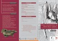 Middle Palaeolithic in North-West Europe: Multidisciplinary ... - Ahob
