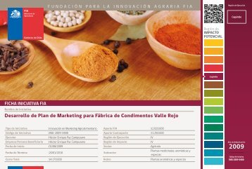 Desarrollo de Plan de Marketing para Fábrica de Condimentos ... - Fia