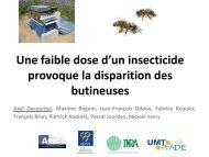 Une faible dose d'un insecticide provoque la disparition des ...