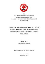 Download (5Mb) - Süleyman Demirel Üniversitesi