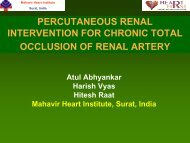 percutaneous renal intervention for chronic total occlusion of renal ...