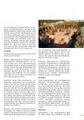 Jahresbericht 2006 Sozial- und Entwicklungshilfe - Kolping Schweiz - Seite 3