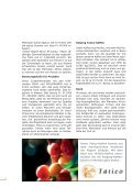 Jahresbericht 2006 Sozial- und Entwicklungshilfe - Kolping Schweiz - Seite 4