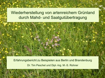 Wiederherstellung von artenreichem Grünland durch Mahd- und ...