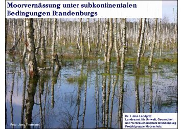 Moorschutz in Brandenburg