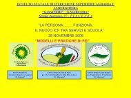 Modelli e pratiche PEI - USP di Piacenza