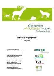 Endbericht Projektphase 1 - Das Projekt Ökologischer Korridor ...