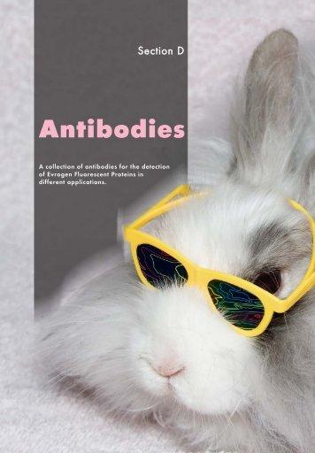 Antibodies - Evrogen