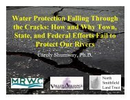 Water Protection Falling Through the Cracks: How and Why Town ...