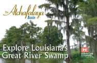 Explore Louisiana's - US Army Corps of Engineers New Orleans ...