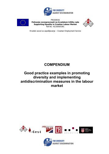 COMPENDIUM Good practice examples in promoting diversity and ...