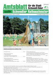 Amtsblatt 7/2010 vom 28. Juli 2010 (PDF - Stadt Schwedt/Oder