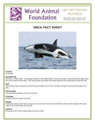 ORCA FACT SHEET - World Animal Foundation