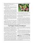 2kqZFTCFf - Page 4