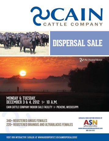 DISPERSAL SALE - Advanced Video Auctions