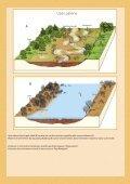 28876/LIFE_Palienes_parskats.pdf - Latvijas Dabas fonds - Page 2