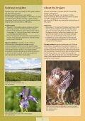 28876/LIFE_Palienes_parskats.pdf - Latvijas Dabas fonds - Page 4