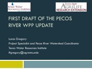FIRST DRAFT OF THE PECOS RIVER WPP UPDATE
