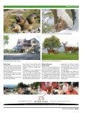 Download - Historische Verkehrsschau Altenrhein - Seite 3