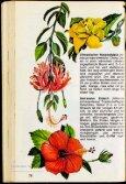 Morton, Julia F. Tropische Blumen. Die schönsten ... - buchkalmar.de - Seite 7