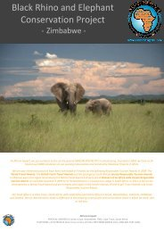 Black Rhino and Elephant Conservation Project - African Impact