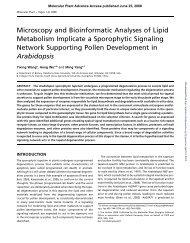 Microscopy and Bioinformatic Analyses of Lipid ... - Molecular Plant