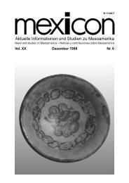 Aktuelle Informationen und Studien zu Mesoamerika