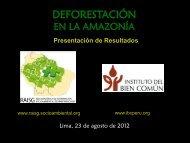 DEFORESTACIÓN - RAISG - Instituto Socioambiental
