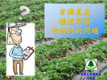 有機草莓種植研習講座 - 漁農自然護理署