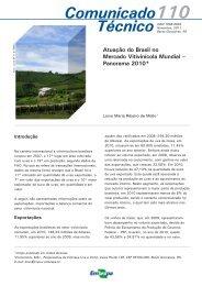 Atuação do Brasil no Mercado Vitivinícola Mundial – Panorama 2010