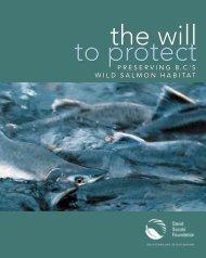 Preserving B.C.'s wild salmon habitat - David Suzuki Foundation