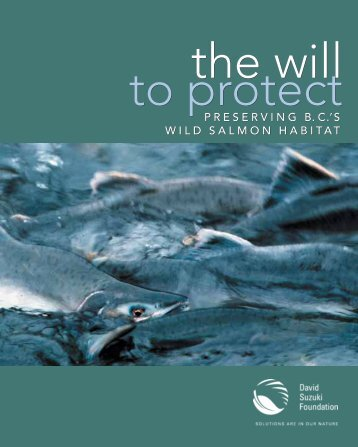 Preserving B.C.'s wild salmon habitat - David Suzuki Foundation