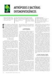 artrópodes e bactérias entomopatogênicos - Biotecnologia