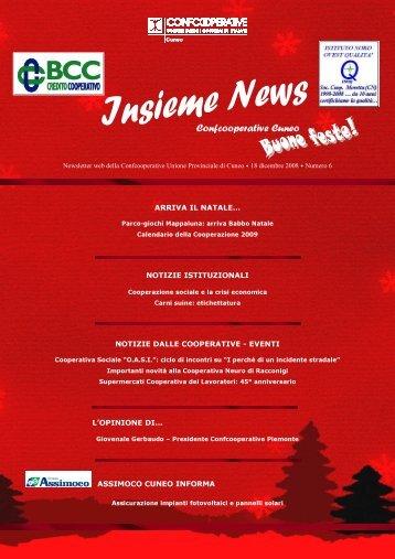 2008. Insieme News numero 6 - Confcooperative