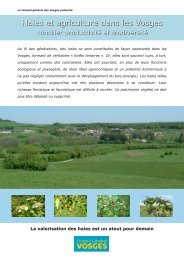 Haies et agriculture dans les Vosges