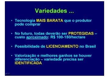 Paulo Popp - Associação Brasileira da Batata (ABBA)