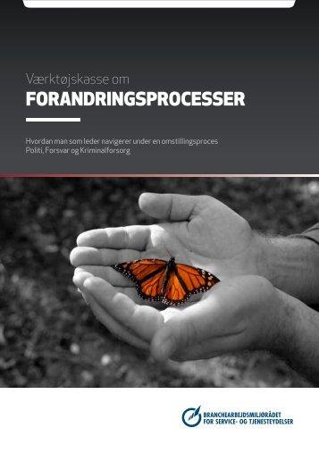 forandringsprocesser - BAR - service og tjenesteydelser.