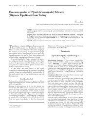 Two new species of Tipula (Lunatipula) Edwards (Diptera: Tipulidae ...