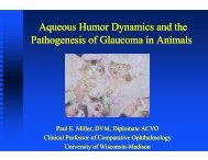 Aqueous Humo Pathogenesis of G Aqueous Humo Pathogenesis of ...