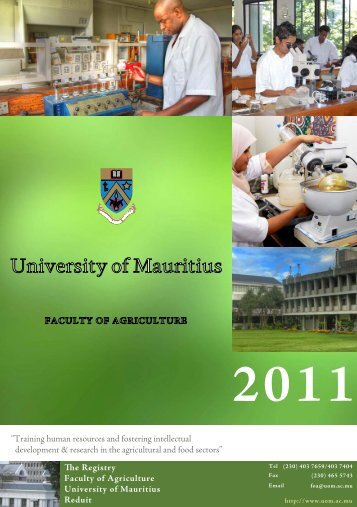 the University of Mauritius