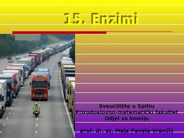 15. Enzimi.pdf