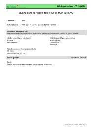 Quartz dans le Flysch de la Tour de Duin (Bex, VD) - admin.ch