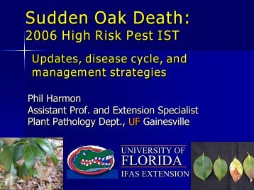 Sudden Oak Death - North Florida Research & Education Center