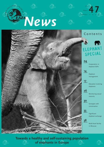 From the African Elephant EEP - European Association of Zoos and ...